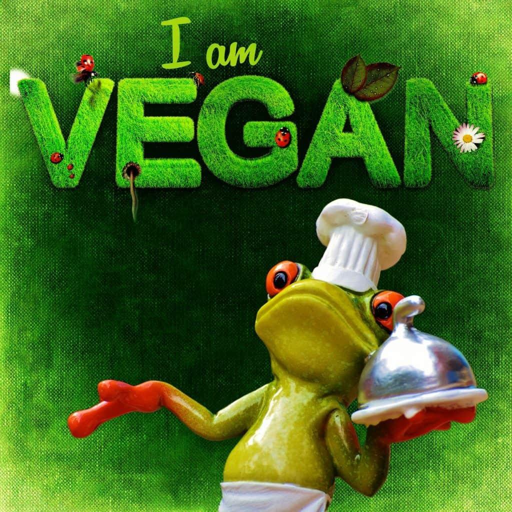 vegan-1220824_1920