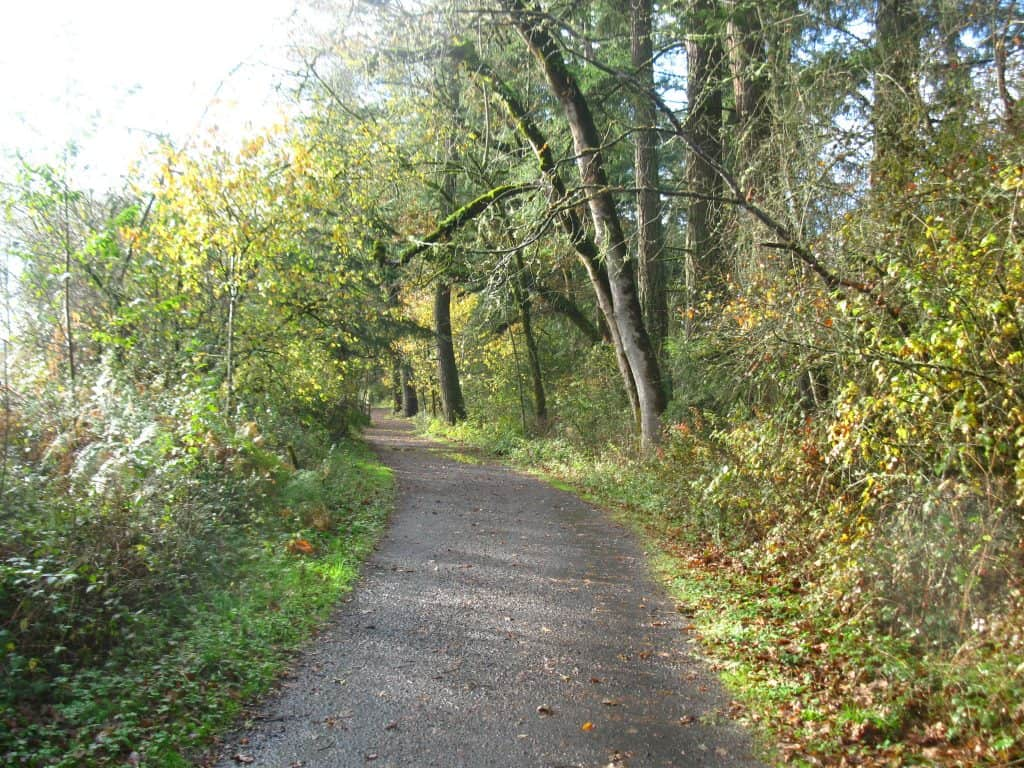 Photo from my awesome run on the Lacamas Lake trail.