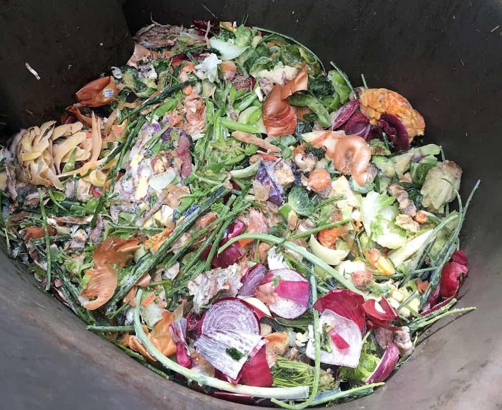 Vegetable Food Scraps