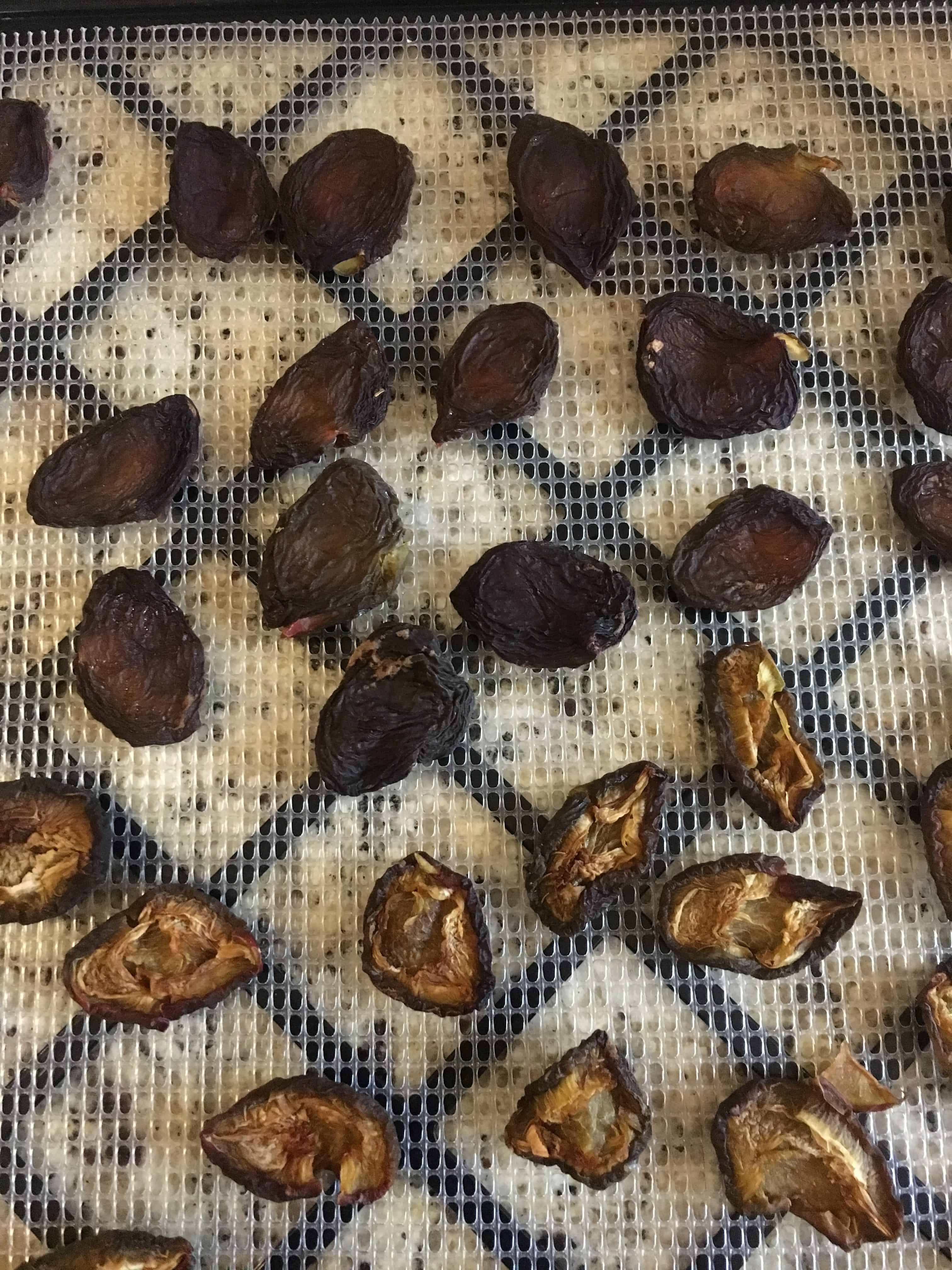 Dried prunes, both sides shown. https://trimazing.com