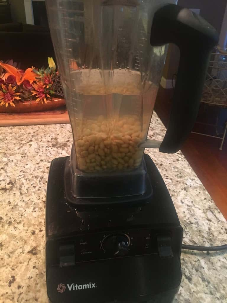 Soaked soybeans in water in a Vitamix blender. https://trimazing.com