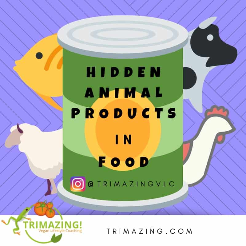Hidden Animal Products in Food
