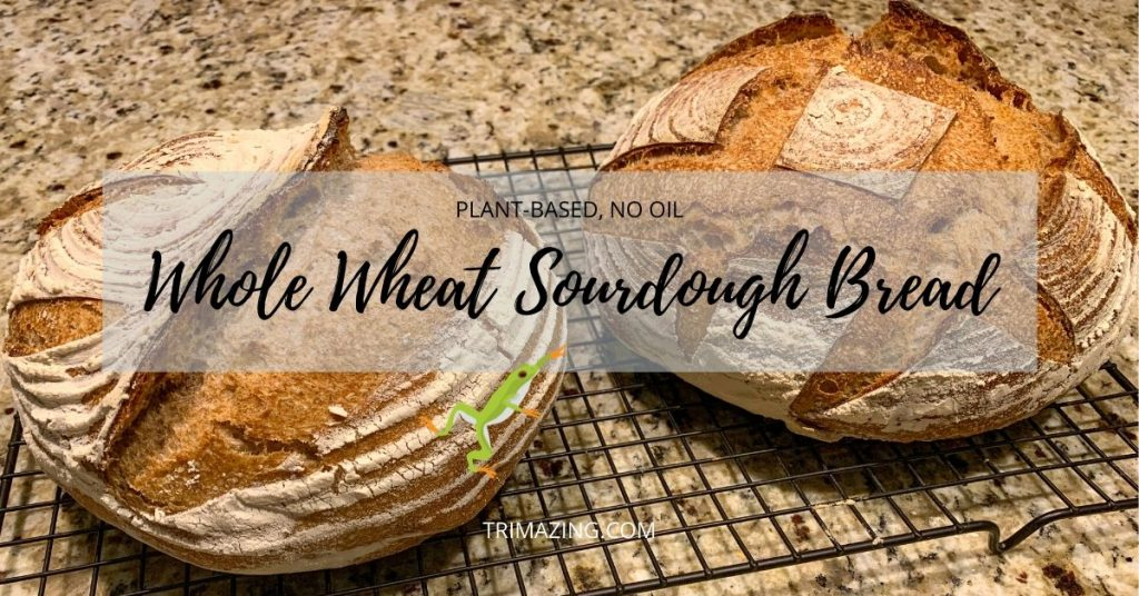 Whole Wheat Sourdough Bread FB